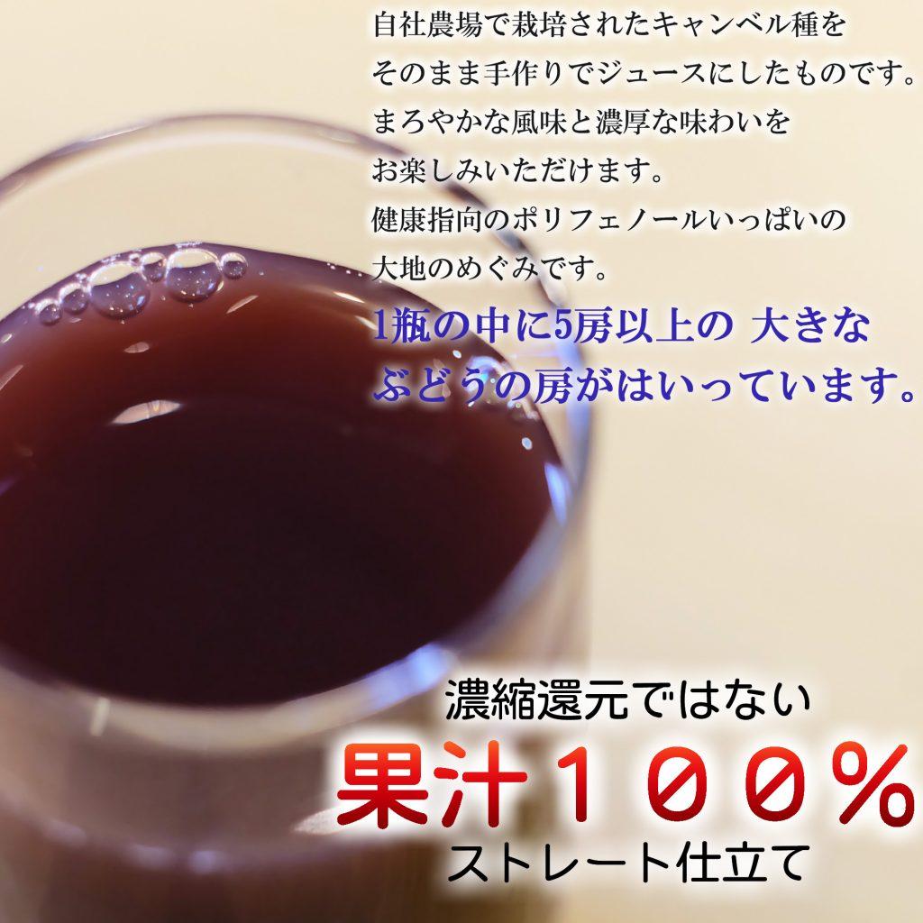 濃縮還元ではない果汁100%