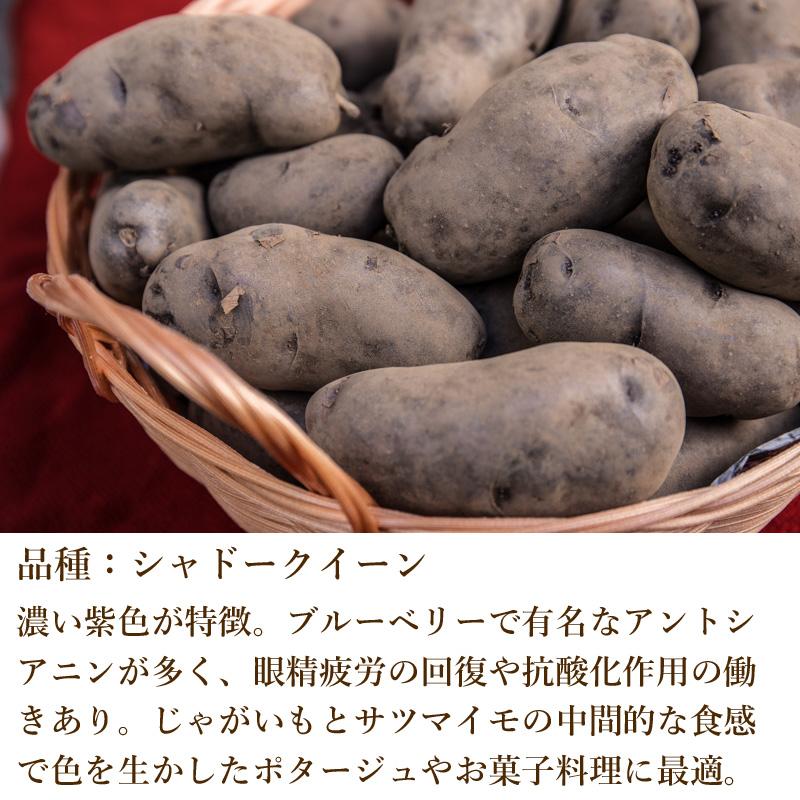 奥久慈野菜 シャドークイーン