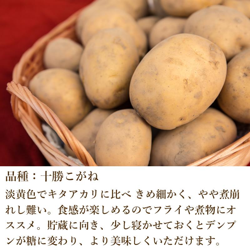 奥久慈野菜 十勝こがね