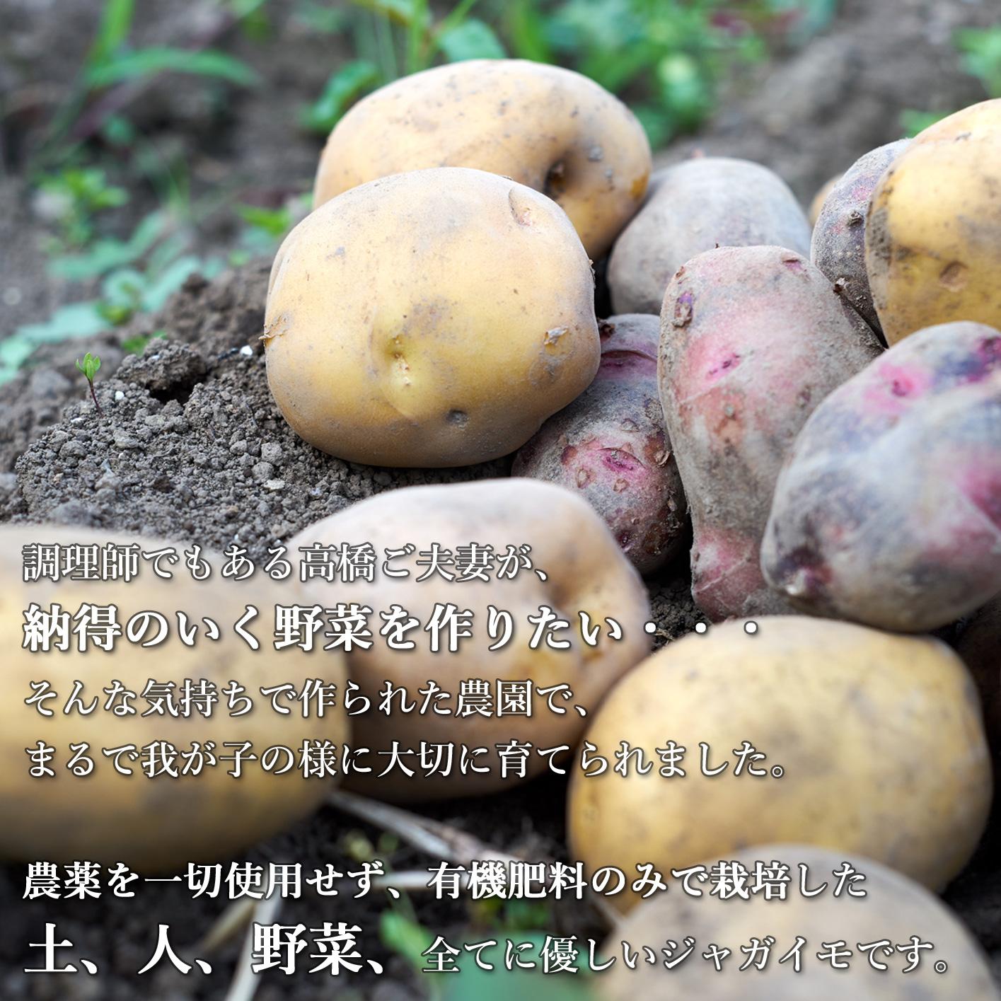 有機肥料のみで栽培したじゃがいも