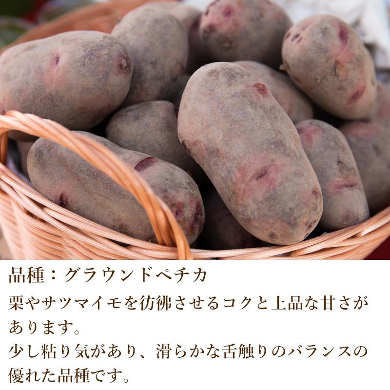 奥久慈野菜 グラウンドペチカ